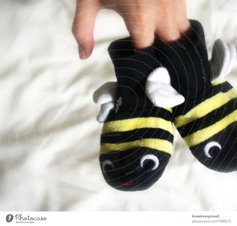 hum,hum,hum... Hand Fingers Stockings Footwear Bee Wing Stripe Bumble bee Colour photo Cute Kiddy clothes Isolated Image Bright background Animal figure