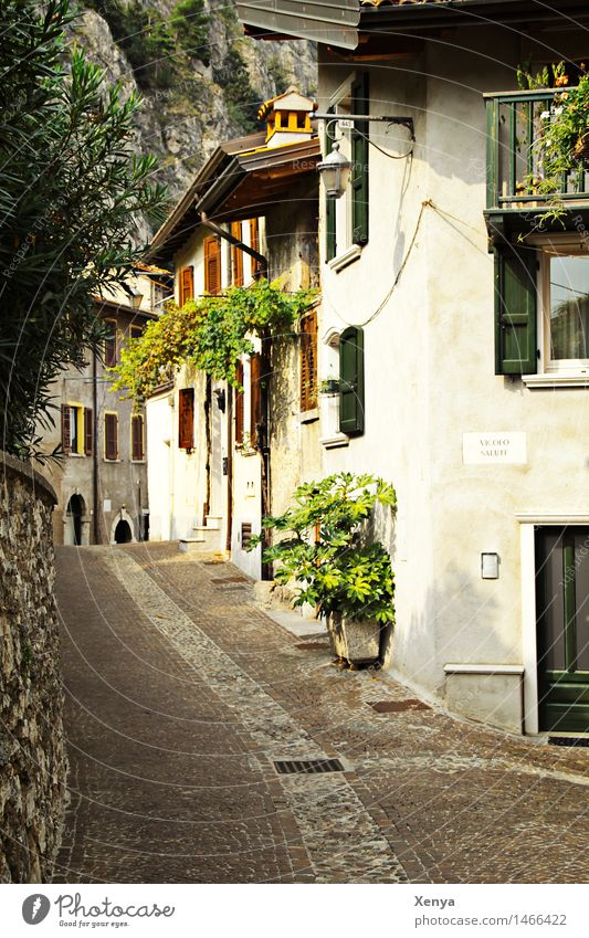Row of houses in Limone Village Deserted House (Residential Structure) Brown Green White Picturesque Vacation destination Vacation mood Alley Cobblestones