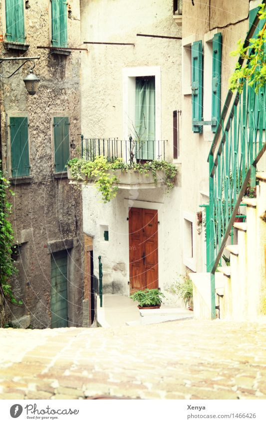 Alley with houses and stairs in Limone Village House (Residential Structure) Facade Balcony Green Idyll Vacation destination Calm Vacation mood Summer Italy