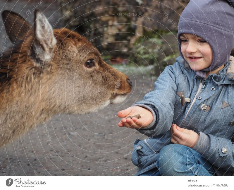 Feeding Food Human being Masculine Child Boy (child) 1 3 - 8 years Infancy Fashion Jeans Jacket Cap Animal Wild animal Roe deer Observe Discover Eating Smiling