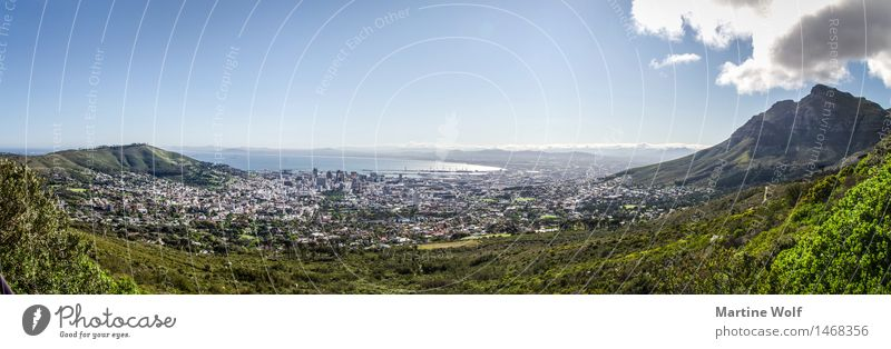 Cape Town Panorama Landscape Port City Downtown Vacation & Travel Far-off places Africa Province Western Cape South Africa Table mountain Horizon Sky