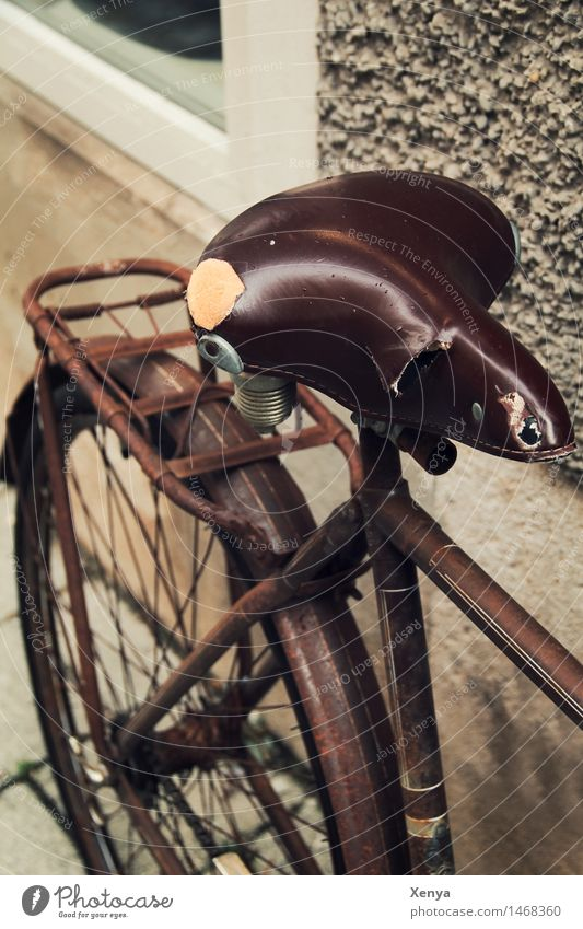 Retro bicycle saddle Bicycle Metal Rust Brown Nostalgia Bicycle saddle Old Leather Exterior shot Deserted Day Colour photo Shallow depth of field Subdued colour