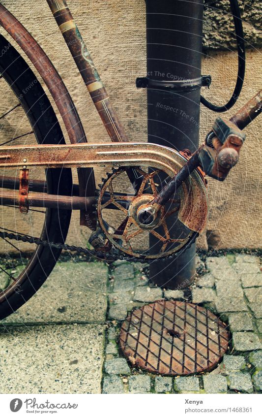 Designer Grille Chain Bicycle Metal Rust Old Retro Brown Nostalgia Bicycle chain Pedal Exterior shot Deserted Day