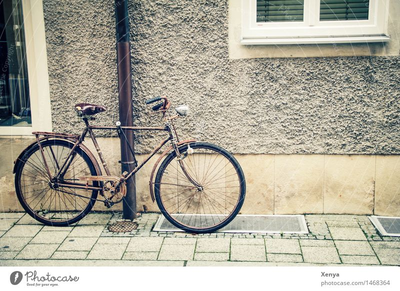 Retro bike on a wall Old town House (Residential Structure) Wall (barrier) Wall (building) Bicycle Metal Brown Beige Parking Sidewalk Exterior shot Deserted