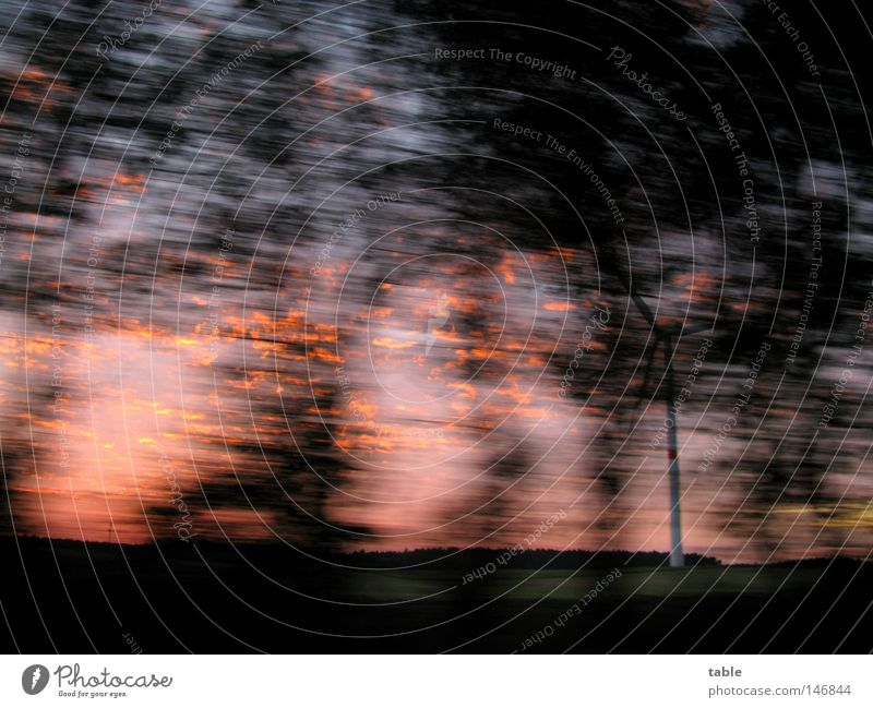 on the way Street Tree Evening Autumn In transit Driving Trip Black Red Blue Motion blur Speed Dark Joy Dusk
