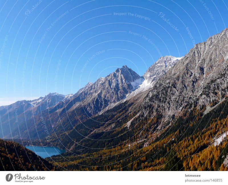 Alto Adige Autunno Autumn Multicoloured Fresh Seasons Italy Alps Austrian Alps Alpine South Tyrol Antholzer Lake Antholzer valley Larch Yellow October Mountain
