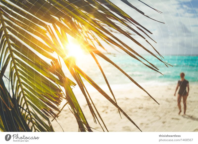 Stranded on a desert island! Feminine 1 Human being Sand Water Leaf Palm tree Beach Ocean Island T-shirt Footprint Relaxation Walking Dream Exotic Happy Blue