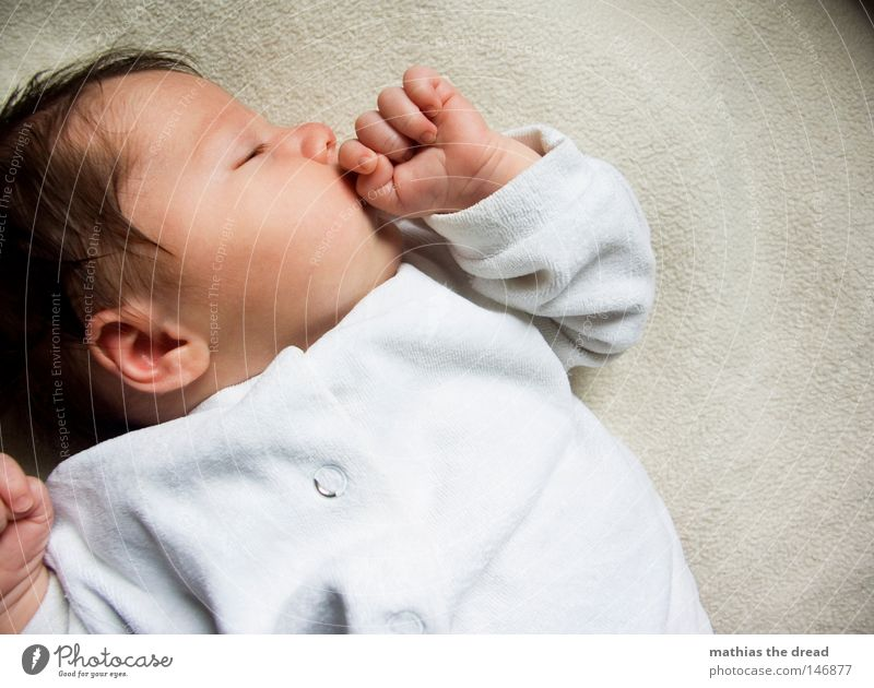 KNOCK-OUT Baby Offspring Girl Sleep Dream Calm Contentment Face of a child Portrait photograph Bright background 1 Person Individual Cute Peaceful Profile