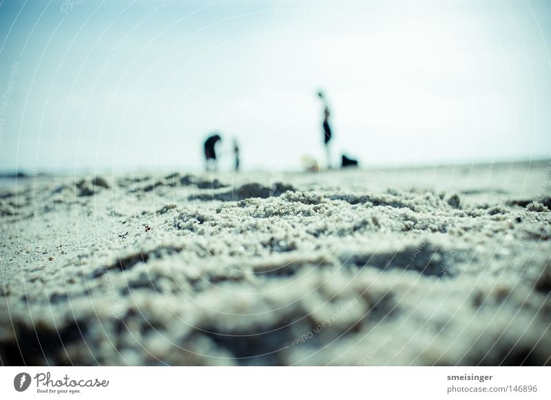Human being Sky Vacation & Travel Summer Sun Relaxation Ocean Beach Coast Happy Group Sand Couple Horizon Dream Infancy