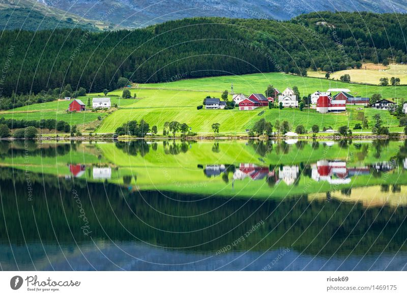 Nature Vacation & Travel Water Relaxation Landscape House (Residential Structure) Mountain Building Lake Tourism Idyll Hut Scandinavia Norway Mountain lake