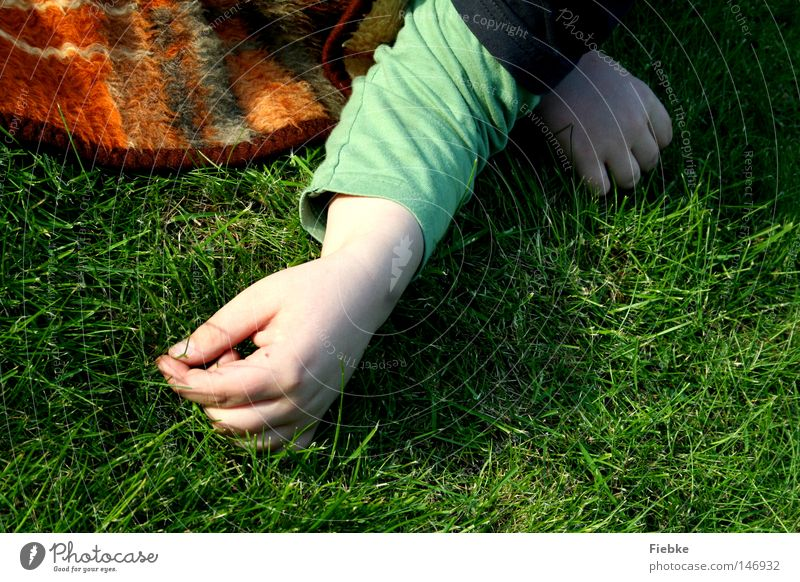 grass inventory Grass Floor covering Ground Meadow Blanket Hand Human being Child Boy (child) Blade of grass Checkered Green Physics Summer Memory Calm
