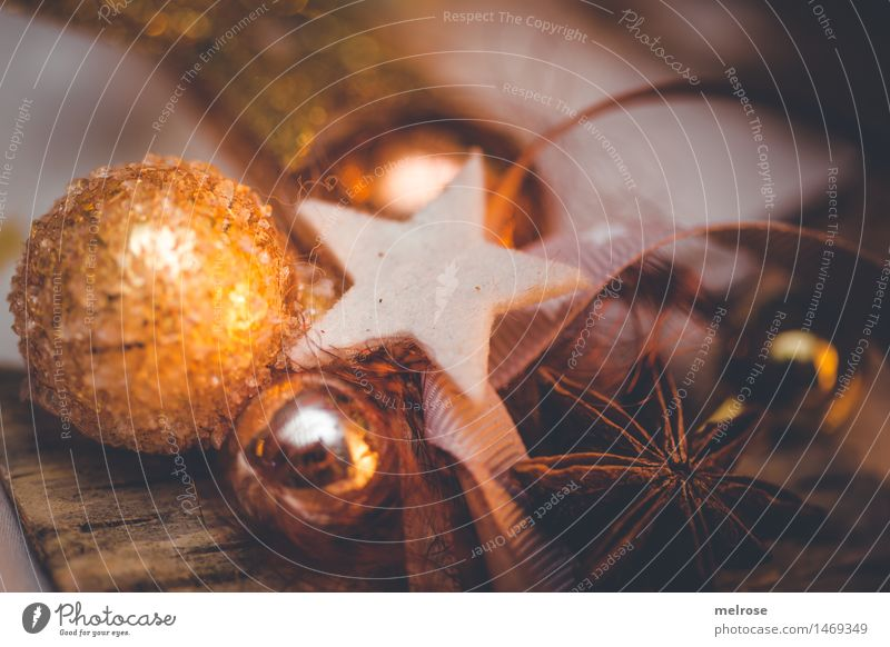 City Christmas & Advent Beautiful White Style Brown Moody Design Orange Glittering Illuminate Decoration Elegant Gold Creativity To enjoy
