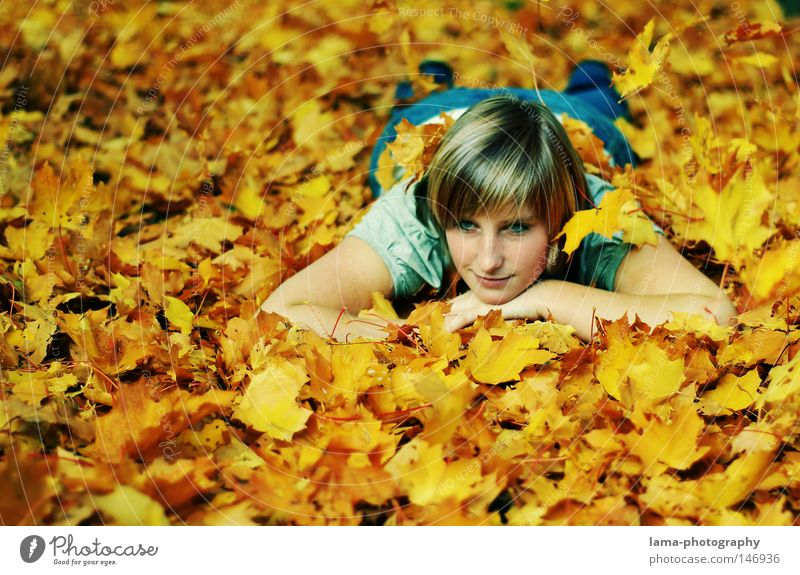 Woman Youth (Young adults) Beautiful Tree Summer Joy Leaf Loneliness Relaxation Autumn Freedom Lamp Dream Moody Gold Lie