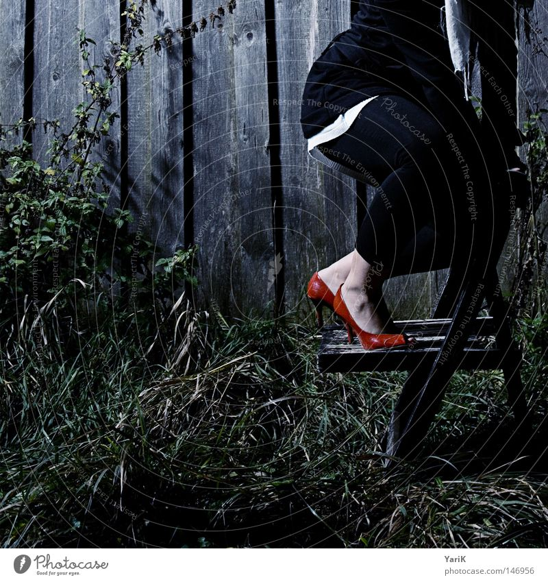 dark red Photo shoot Barn Wood Wooden board Wall (building) Dark Footwear High heels Woman Cold Red Grass Meadow Leaf Bushes Green Partially visible Transience