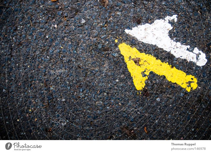 White Yellow Far-off places Street Colour Cold Autumn Above Gray Stone Lanes & trails Free Safety Gloomy Asphalt Trust
