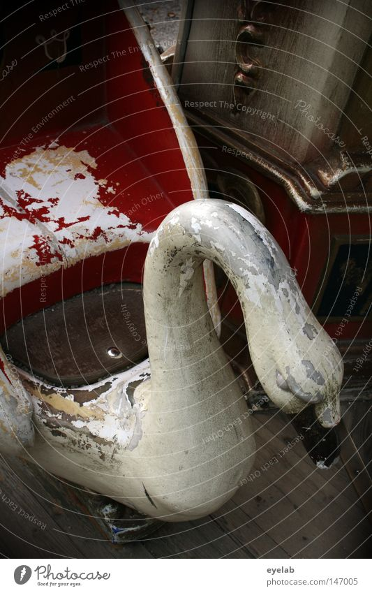 Old White Red Joy Animal Infancy Decoration Feather Broken Retro Round Grief Plastic Derelict Fairs & Carnivals Seating