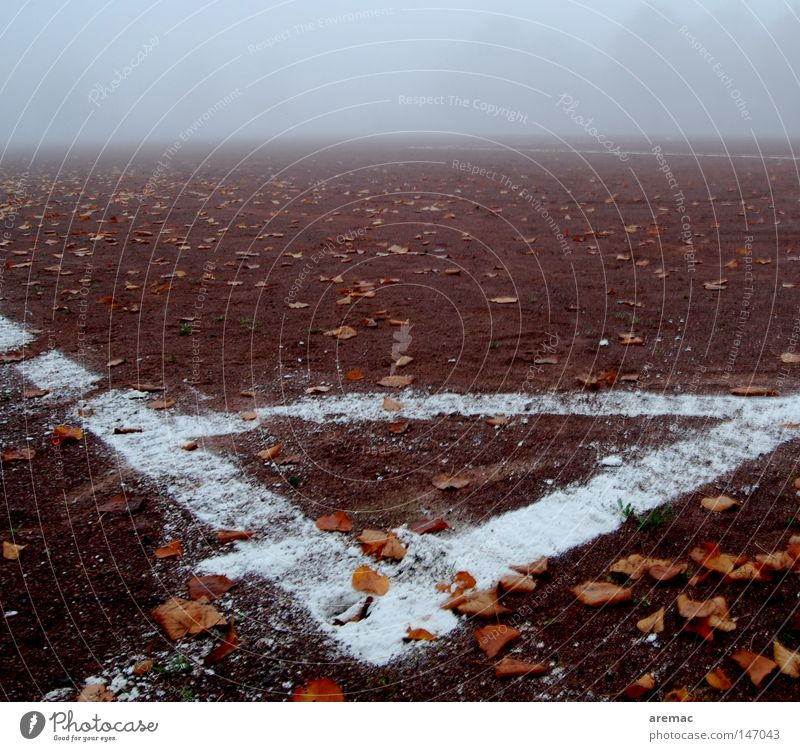 corner Football pitch Autumn Leaf Fog Playing Sports Leisure and hobbies Line Soccer Corner Ashes ash pit