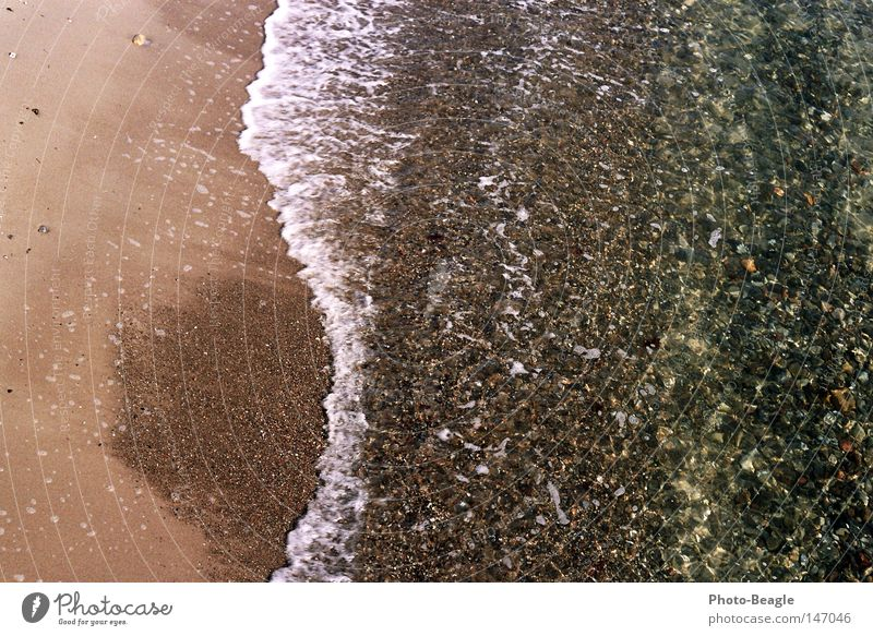 Water Ocean Beach Vacation & Travel Stone Lake Sand Waves Wet Baltic Sea Mussel Surf White crest Sea water