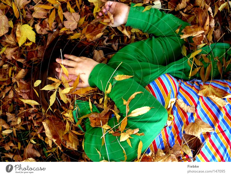 hide-and-seek à la kindergarten ... Autumn Leaf Multicoloured Brown Seasons Hide Ground Striped Grass green Face Hidden Lie Joy Boredom Time Leisure and hobbies