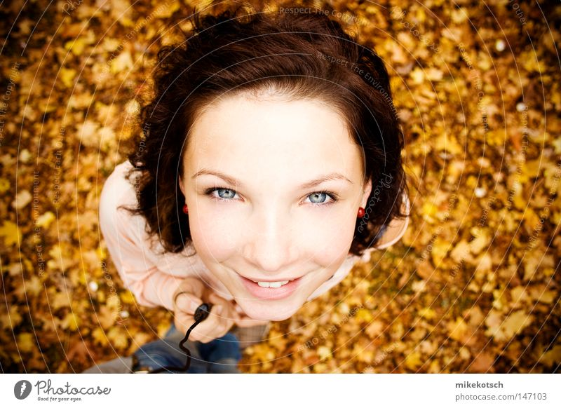 Joy Face Leaf Eyes Yellow Autumn Hair and hairstyles Mouth Bright Brown Nose Lips Pallid Release Autumnal Ochre