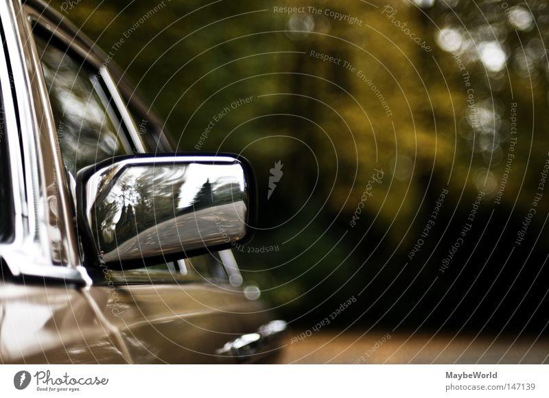Tree Autumn Car Glittering Motor vehicle Mirror Luxury Varnish Paints and varnish Side mirror