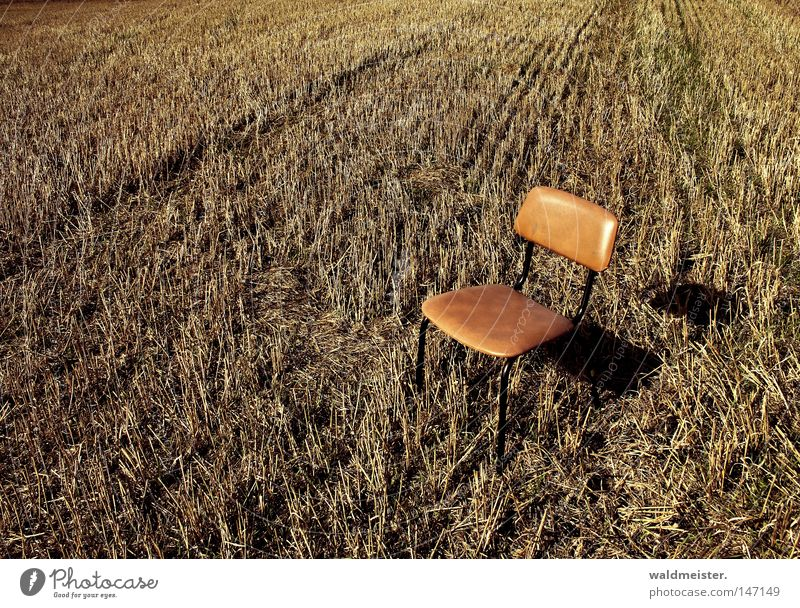 Monday Chair Field Harvest Seating Break Relaxation