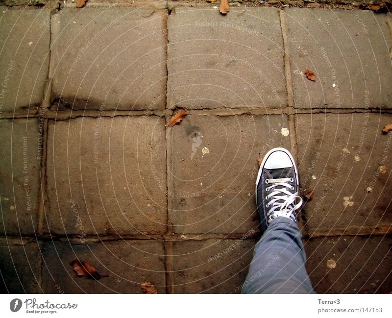 Youth (Young adults) Tree Red Leaf Yellow Street Autumn Gray Stone Footwear Legs Brown Orange Wait Dirty Wet