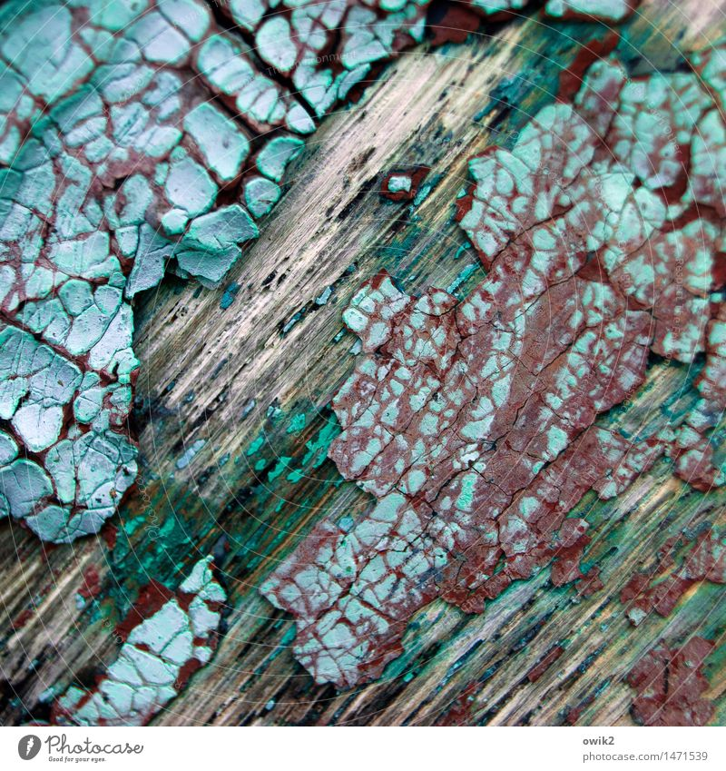 Old Green Dye Wood Gloomy - a Royalty Free Stock Photo from Photocase