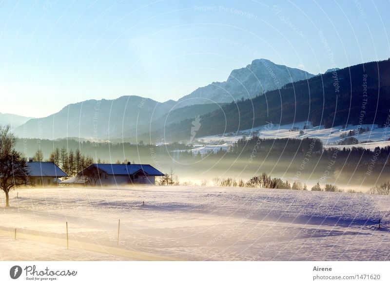 once upon a time there was VI Winter Snow Landscape Sky Cloudless sky Beautiful weather Fog Hill Alps Mountain Snowcapped peak Berchtesgaden Alpes Upper Bavaria