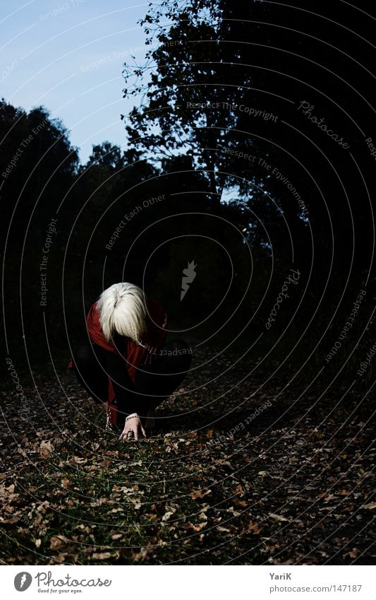 dark red II Woman Posture Leaf Autumn Dark Scarf Cape Red Black White Blonde Tree Footpath Field Meadow Bushes Hand Grief Loneliness Negative Night Evening