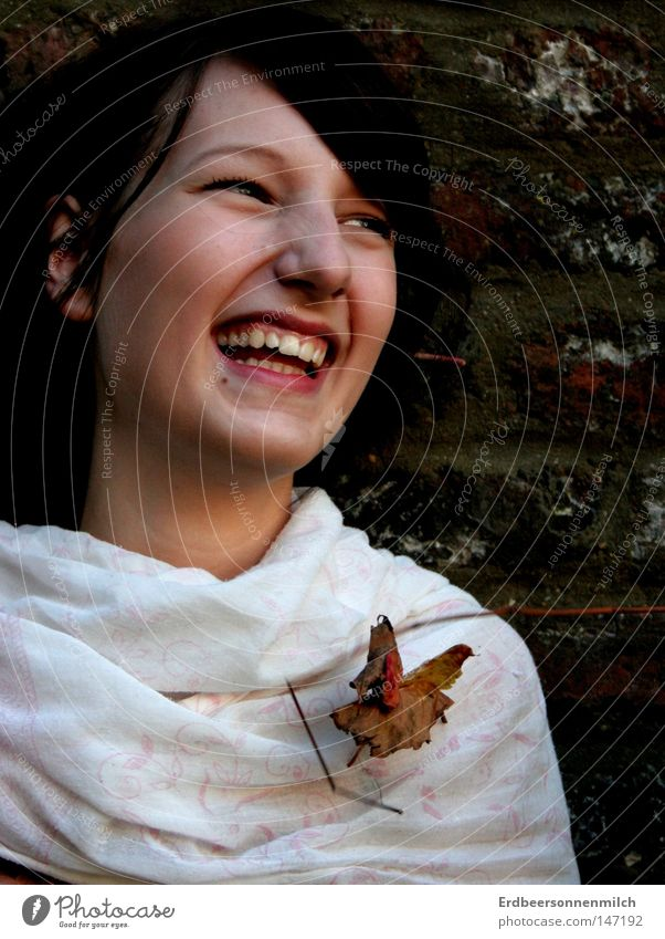 Woman Green Tree Joy Leaf Autumn Cold Wall (building) Happy Sand Laughter Rain Earth Teeth Brick Seasons