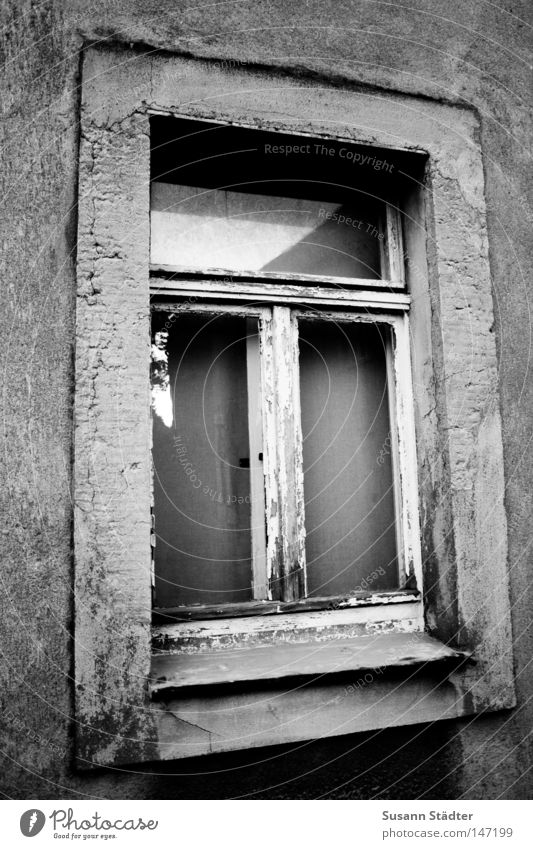 Old White House (Residential Structure) Black Loneliness Window Door Derelict GDR Redecorate Redevelop Old-school Modernization Conventional
