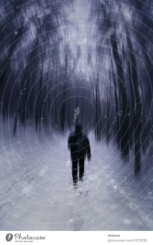Human being Man Loneliness Calm Winter Dark Forest Cold Adults Emotions Lanes & trails Snow Going Masculine Dream Ice