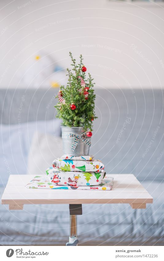 gifts Leisure and hobbies Playing Flat (apartment) Sofa Table Feasts & Celebrations Christmas & Advent New Year's Eve Plant Tree Foliage plant String Bow Green