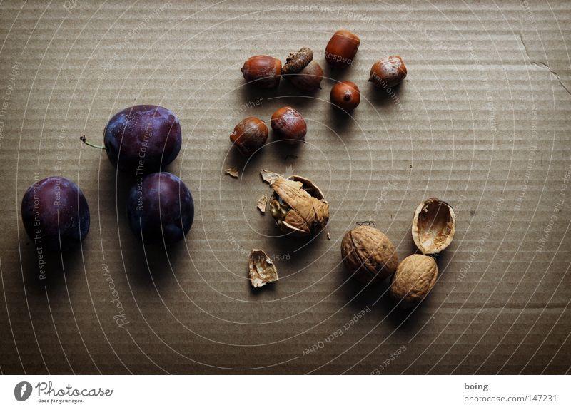 Nutrition Autumn Garden Fruit Harvest Baked goods Bowl Horticulture Nut Packaged Box up Transmit Plum Nutshell