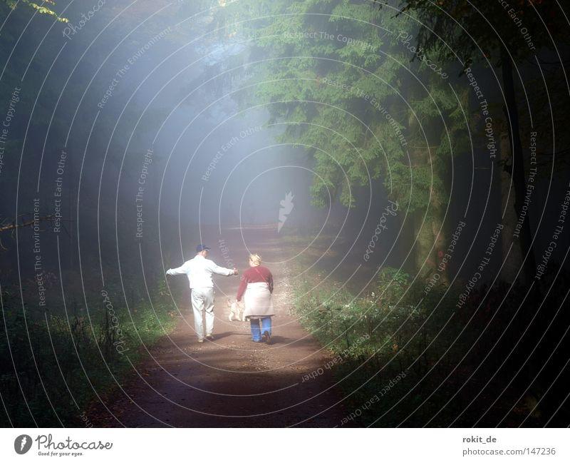 Woman Man Tree Sun Forest Dark To talk Autumn Dog Lanes & trails Bright Arm Hiking Going Fog Walking