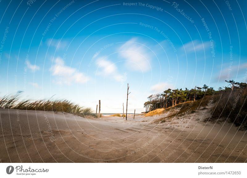 Nature Blue Green Water White Ocean Landscape Clouds Beach Grass Coast Brown Sand Horizon Weather Waves