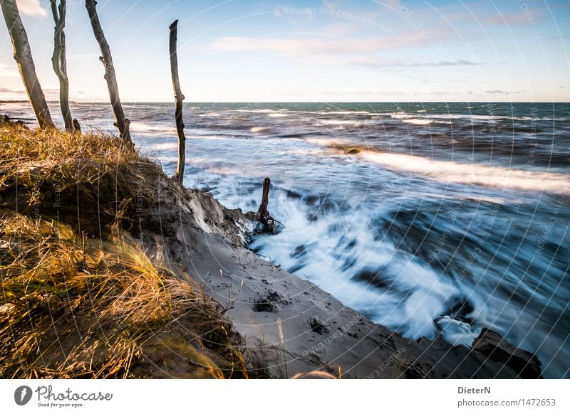 swell Beach Ocean Waves Nature Landscape Sand Water Clouds Horizon Weather Wind Gale Coast Baltic Sea Blue Yellow White Darss White crest