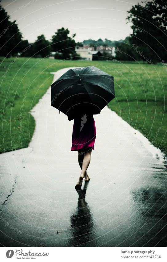 Ain't no sunshine... Rain Weather Thunder and lightning Autumn Summer Wet Puddle Lanes & trails Meadow Field Cold Umbrella Damp Dress To go for a walk Walking