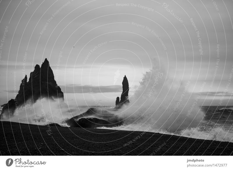 Surf in Vik - Iceland Vacation & Travel Trip Adventure Far-off places Freedom Beach Ocean Waves Environment Nature Landscape Elements Sand Water Wind Coast Wet