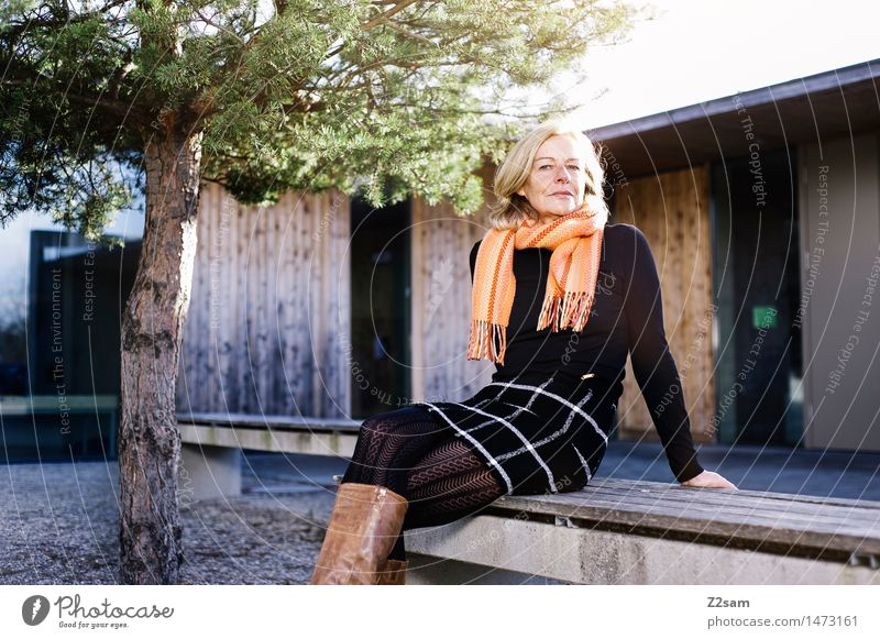 50 year old sits on a bench in the sun Lifestyle Elegant Style Feminine Woman Adults 60 years and older Senior citizen Autumn Beautiful weather Tree Town