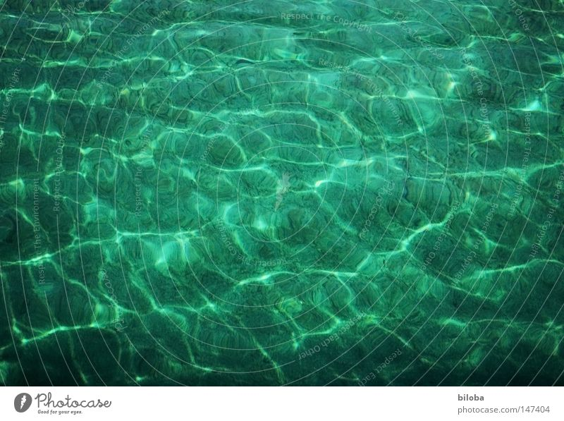 reflections Water Life Part Elements Chemical elements Basic Lake Liquid Fluid Waves Peace Smooth Soft Delicate Calm Think Reflection Green Pattern Comforting