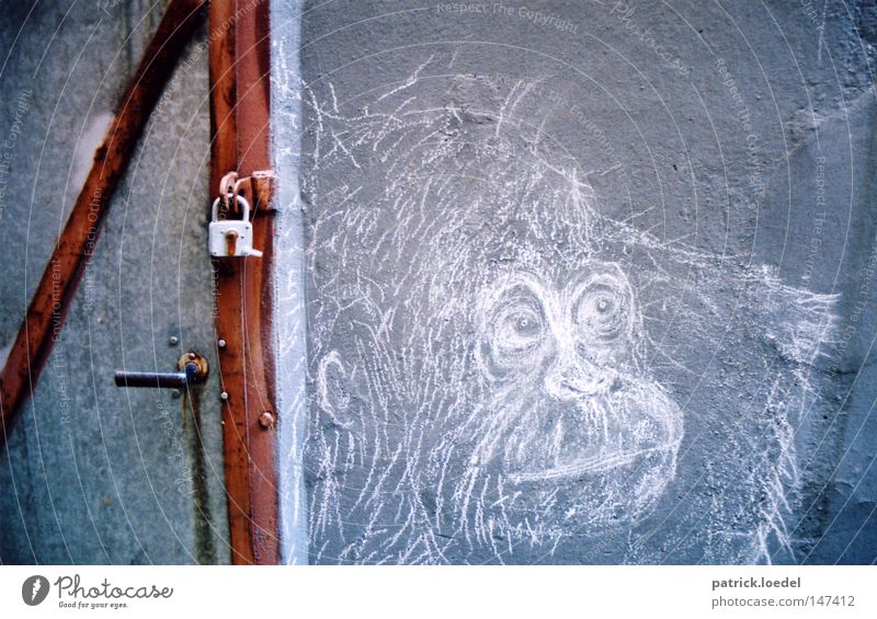 [HH08.3] Shut up, monkey dead. Monkeys Gorilla King Kong Chimpanzee Apes Painting and drawing (object) Art Mural painting Rock drawing Stone Age Line Closed Key