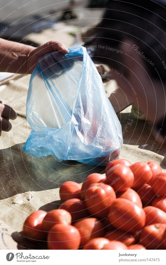 tomatoes Tomato Vegetable Nutrition Food Trade Sell Shopping Red Paper bag Plastic Plastic bag Blue Hand Merchant Shadow Zagreb Croatia Vacation & Travel