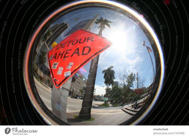 WELCOME TO MIAMI Palm tree Sun Vacation & Travel Americas Miami Physics Hot Beach Summer Round Fisheye Multicoloured Florida Back-light USA Street sign Sky
