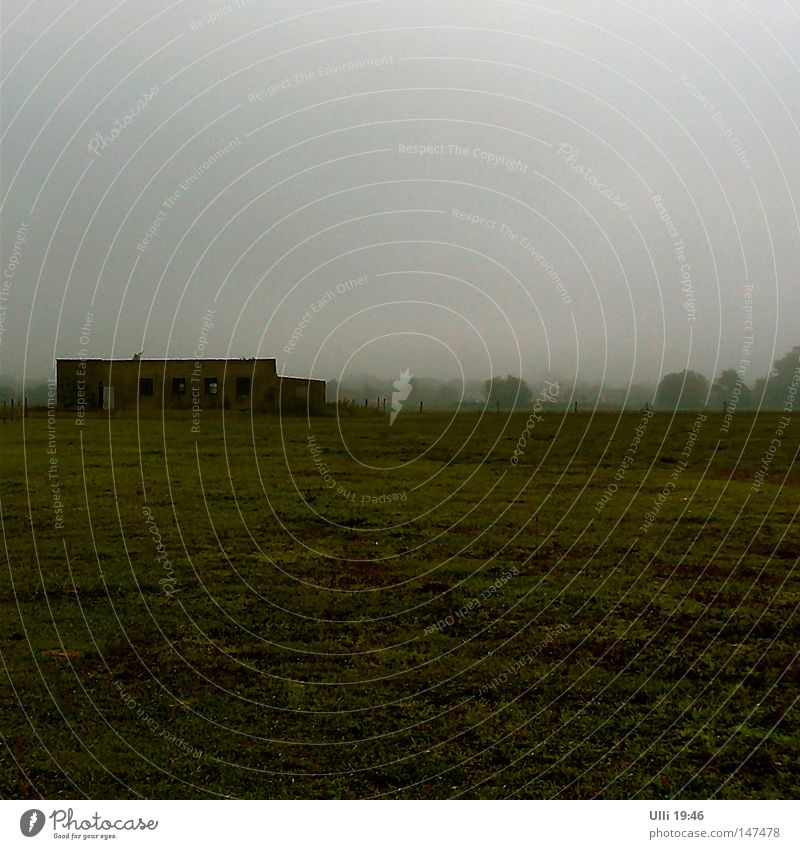 Old Calm Loneliness Dark Autumn Meadow Gray Landscape Field Fog Empty Gloomy End Mysterious Derelict Square