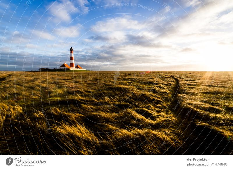 Lighthouse Westerhever and sunlamps Vacation & Travel Tourism Trip Adventure Far-off places Freedom Environment Nature Landscape Plant Winter North Sea Island