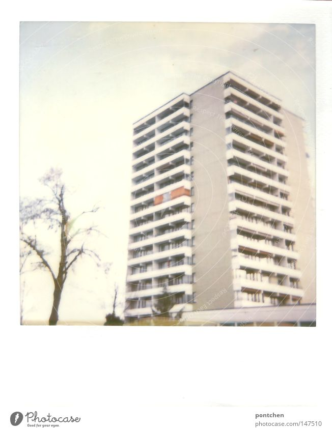 Sky Tree Winter House (Residential Structure) Life Window Building Bright Flat (apartment) High-rise Peace Polaroid Living or residing Bavaria Smooth Anonymous