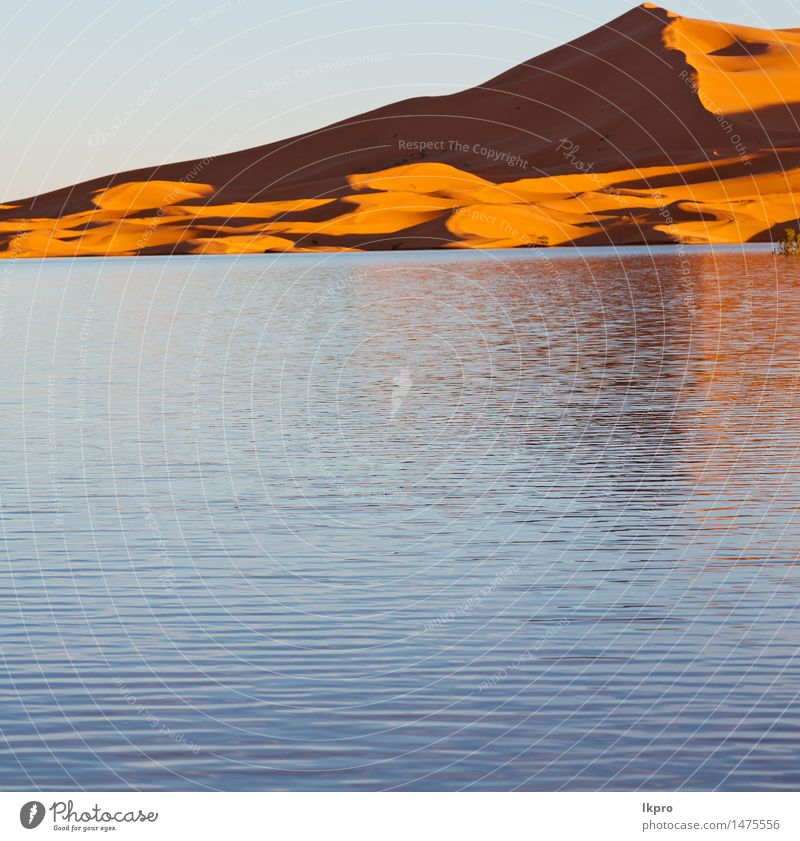 sand Nature Vacation & Travel Sun Red Landscape Loneliness Yellow Warmth Lake Sand Adventure Hot Africa Dune Drought Extreme