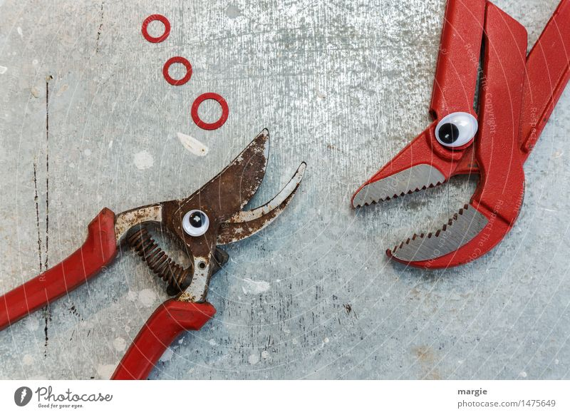 Red Animal Eyes To talk Metal Construction site Fish Profession Services Craft (trade) Tool Bubble Silver Advertising Industry Craftsperson Fantasy